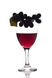 Red wine and grapes Royalty Free Stock Photo