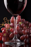 Red Wine with Grapes. Glass of red wine with grapes Royalty Free Stock Photography