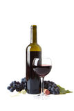 Red Wine and Grapes. On white background Royalty Free Stock Photography