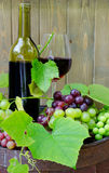 Red wine with grapes Royalty Free Stock Images