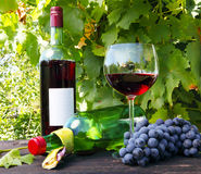Red wine and grapes Royalty Free Stock Image