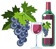 Red wine with grapes, bottle and glass. Illustration of bottle of red wine with wine glass and grapes Royalty Free Stock Photography