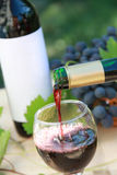 Red wine and grapes composition Royalty Free Stock Photography