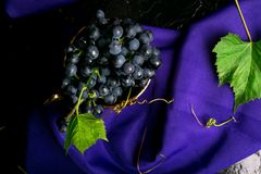 Red wine grapes in golden cup on violet background. Stock Image