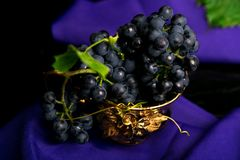 Red wine grapes in golden cup on violet background. Red wine grapes in golden cup on violet background Royalty Free Stock Image