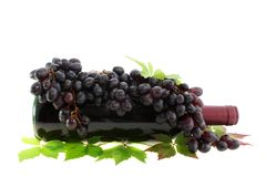Red wine and grapes isolated. Royalty Free Stock Images