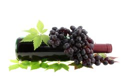 Red wine and grapes isolated. Stock Photos
