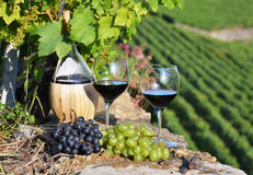 Red wine and grapes Royalty Free Stock Images