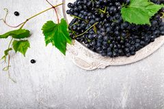 Red wine grapes in silver tray on grey background. Top view. Copy space. Stock Photo