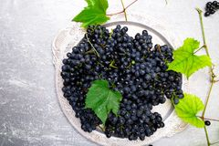 Red wine grapes in silver tray on grey background. Top view. Copy space. Royalty Free Stock Photo