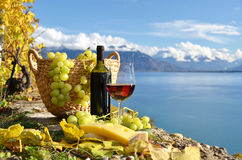 Red wine and grapes Stock Photos