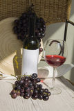 Red wine with grapes Royalty Free Stock Photos
