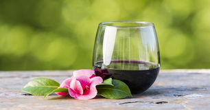 Free Red Wine Outdoors Stock Photography - 30732482