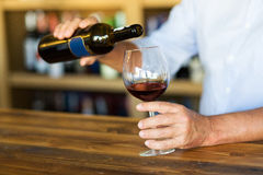 Red wine. Portrait of sommelier in wine store royalty free stock images