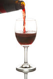 Red wine poured in a wine glass Royalty Free Stock Photo