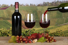 Red wine pouring from a bottle into a glass Royalty Free Stock Image