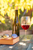 Red wine and red book. In a garden in autumn Stock Photography