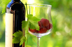 Red wine and red fruits. Royalty Free Stock Photos