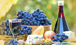 Red wine and red grapes. On the table Royalty Free Stock Images