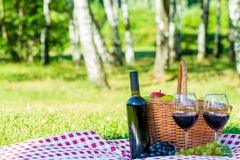 Red wine and ripe grapes lie on a tablecloth on a lawn oklo bask. Et for a picnic Royalty Free Stock Photo
