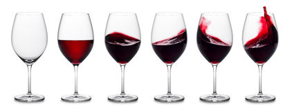 Red wine splash collection Stock Image
