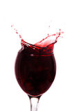 Red wine splashing out Royalty Free Stock Photos