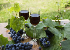 Red wine in stemware standing on the wooden background with grapes and green leaves. Royalty Free Stock Images