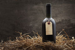 Red wine in the straw Royalty Free Stock Photos
