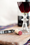 Red wine tasting Royalty Free Stock Photos