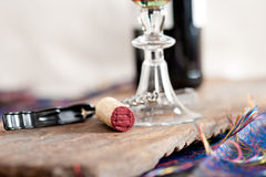 Red wine tasting Royalty Free Stock Images