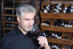 Red wine, tasting. Red wine, man evaluates the color of wine in a glass Royalty Free Stock Image