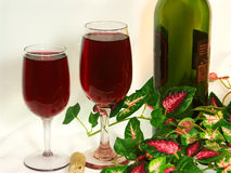Red Wine for Two. Still life photo of two wine glasses filled with delicious red wine, together with a wine bottle and variegated, silk, ivy leaves on a white Stock Images