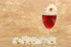 Red wine and white daisies Stock Image
