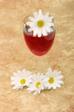 Red wine and white daisies Stock Photo