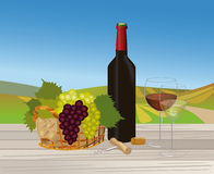 Red wine and white wine in vineyard landscape Royalty Free Stock Photography