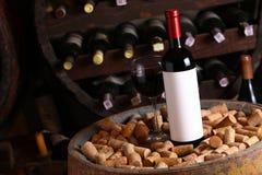 Red wine in wine cellar Stock Image