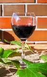 Red wine in wineglass. With grape leaves near brick wall royalty free stock image