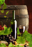 Red Wine With Vine And Cask Royalty Free Stock Photos