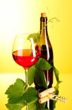 Red wine on yellow Stock Photography