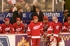 The Red Wings Bench Royalty Free Stock Photo