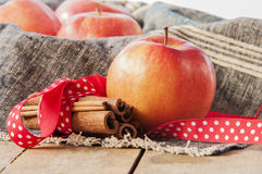 Red winter apples with cinnamon sticks Royalty Free Stock Photography