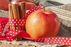 Red winter apples with cinnamon sticks Stock Image