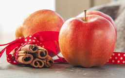 Red winter apples with cinnamon sticks Stock Photography