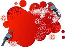 Red winter banner with bullfinches. Royalty Free Stock Photos