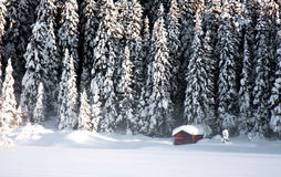Red winter cabin royalty free stock photo