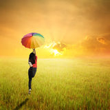 Red woman holding multicolored umbrella in green grass field and sunset Royalty Free Stock Photography