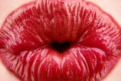Red woman's lips royalty free stock photo