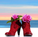 Red woman shoes whit flowers. Red shoes of a woman model back  whit flowers on sky background Royalty Free Stock Photo
