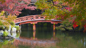 Red wood bridge on a garden in Japan Royalty Free Stock Images