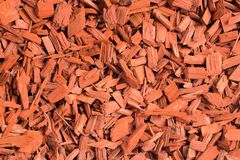 Red wood chips. Natural texture background of red wooden pieces of tree bark. Wood chips, mulch for gardening or natural themes. stock image